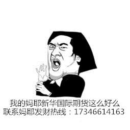 新华国际期货感动天