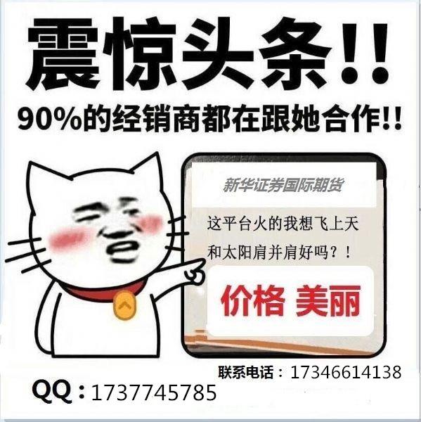 香港新华期货