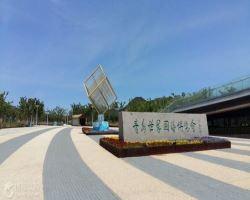 青岛世界园艺