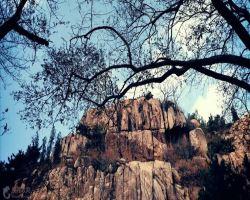 珠山国家森林