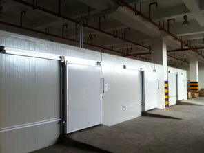 上海大型冷库